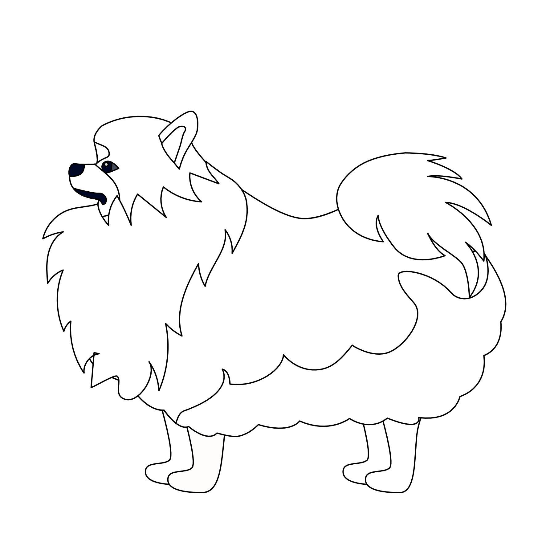 Pies Pomeranian – kolorowanka i szablon do druku