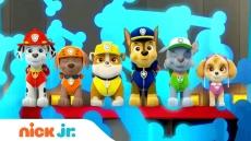 Psi Patrol online i telewizji? Gdzie oglądać?