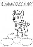 Psi Patrol – Kolorowanka na Halloween z Chasem